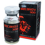 Decanov 300 - Decanoato de Nandrolona 300 mg x 10 ml. Bravaria Labs
